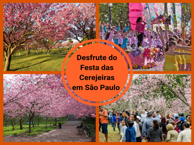 Festa das Cerejeiras jpg